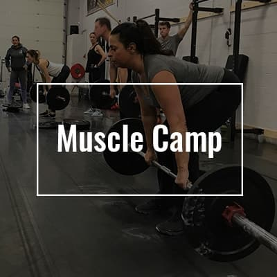 Muscle Camp